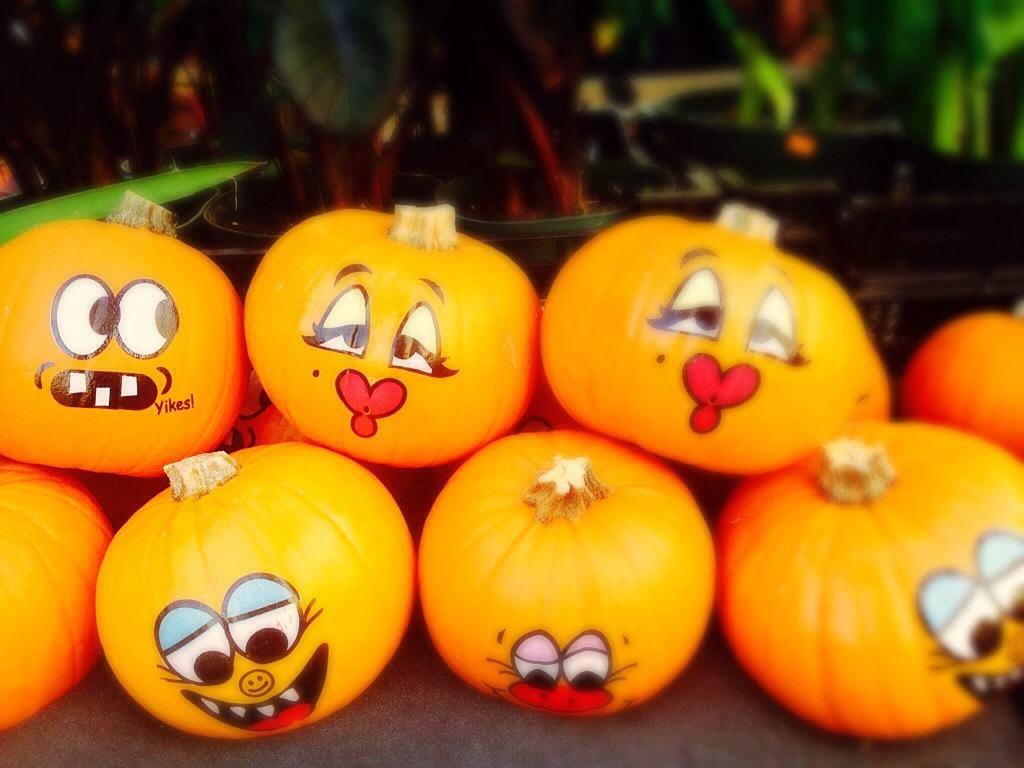 20131014 232229jpg - Friendly Halloween Decorations